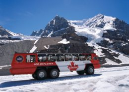 Glacier Adventure Bus